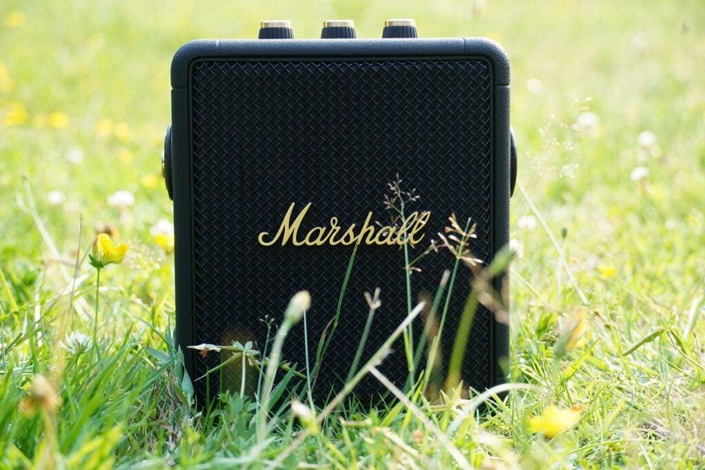 Marshall Stockwell II dans l'herbe